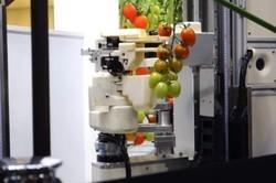 ربات کشاورزی