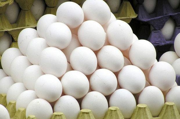 کشف و ضبط ۴۶ تن تخم مرغ غیر بهداشتی در دزفول