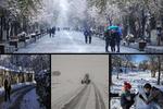 سلامِ برف به برخی استانهای کشور؛ «مهمان سپید» ایرانگردی کرد