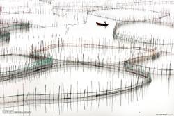 حاجی آباد می تواند به قطب پرورش آبزیان آب شیرین ولب شور تبدیل شود