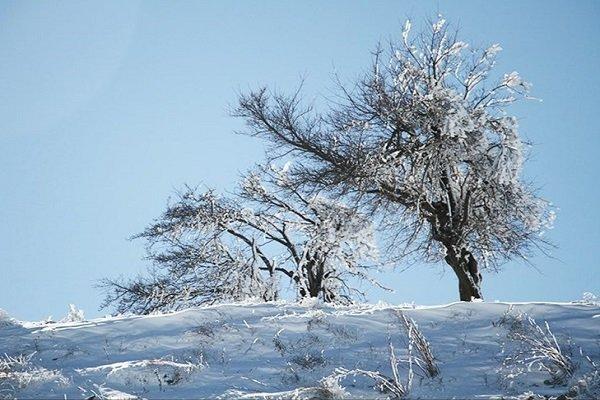 Tahran'da yoğun kar yağışı