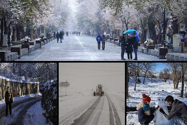 فلم/قائم شہر کے جنگل میں پہلی برف باری