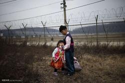 منطقه حایل بین دو کره