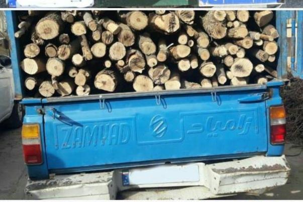 ۲ تن چوب قاچاق بلوط در لردگان کشف شد