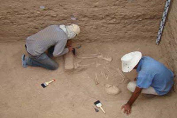 Amasya'da 2 bin 500 yıllık Pers sarayının sütunları bulundu