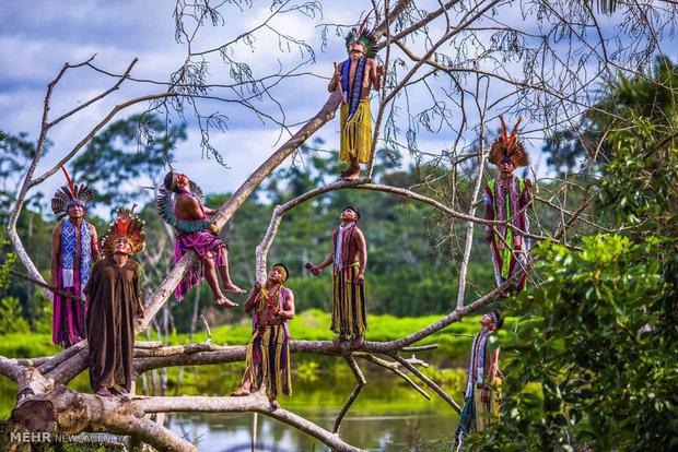 بومیان برزیل