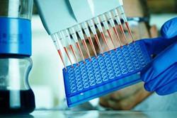 تست جدید دی ان ای ۱۹۳ اختلال نوزادان را شناسایی می کند