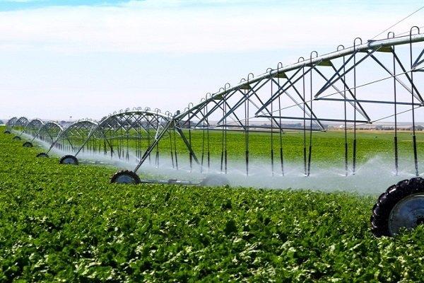 توسعه باغداری مکانیزه در موقوفات آستان قدس رضوی