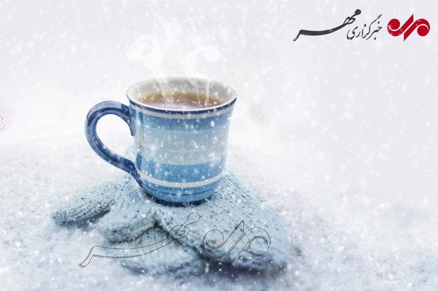دمنوشهای زمستانی چه خواصی دارند؟