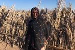 همایش روز زن روستایی ۲۸ مهرماه به صورت مجازی برگزار می شود