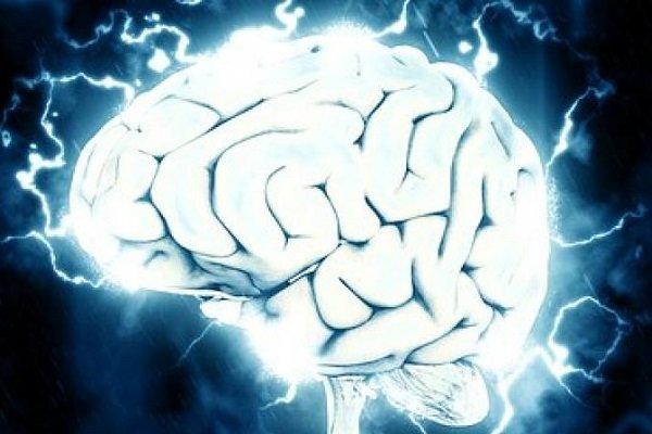 چاپ سه بعدی بافت هایی که عملکرد مغز و ریه را تقلید می کنند,