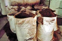 محموله ۱۹ تنی چای قاچاق در یزد توقیف شد