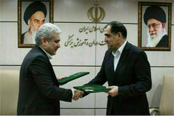 ستاری و هاشمی