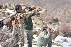 حال ۲ محیطبان مصدوم قمیشلو خوب است/ تحقیقات تا دستگیری شکارچیان ادامه دارد