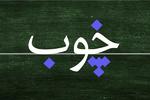 «نقطه» از مهمترین مسئلهها در آموزش فارسی به غیرفارسی زبانان است!