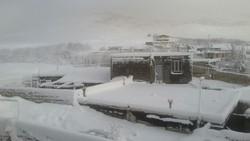 بارش برف در لرستان