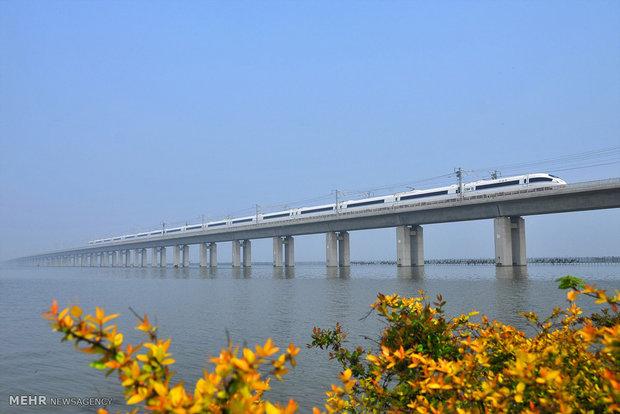 أطول الجسور في العالم