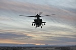 دو کشته بر اثر سقوط یک فروند بالگرد نظامی آمریکا