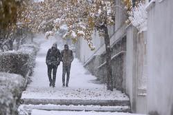 آماده باش ۴۱ اکیپ راهداری در گیلان/بارش برف و باران تشدید می شود