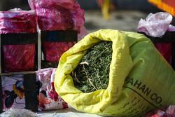 کشف 2017 کیلوگرم مواد مخدر در اصفهان