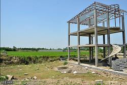 تغییر کاربری اراضی کشاورزی تهران توان زیست محیطی را کاهش داده است