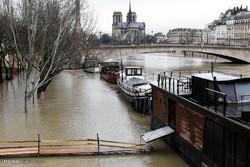سیل در پاریس