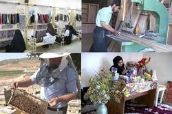 شوراها و دهیاران نسبت به پیگیری  و رفع مشکلات روستاها توجه کنند