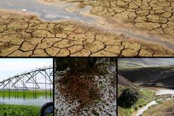 خشکسالی در زنجان