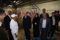 استاندار قزوین از چند واحد تولیدی و صنعتی بازدید کرد
