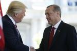 ترامپ با اردوغان دیدار کرد