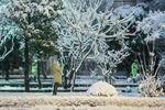 Tahran'a beklenen kar geldi