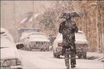 بارش برف، باران و مه گرفتگی در ۱۴استان کشور/ترافیک در آزادراه کرج