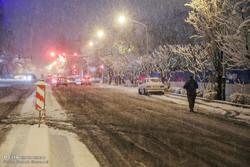 اسکان ۴۰ نفر در پایگاههای هلال احمر البرز/هفت نفر مصدوم شدند
