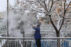 بارش برف و باران در قم