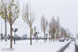 تقاضای لغو مسافرت های غیرضروری به فیروزکوه