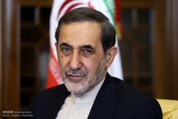 ICRC should stop war in Syria, Yemen: Velayati