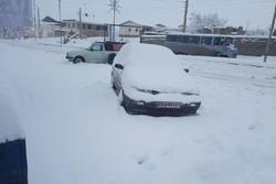 برف - کراپشده
