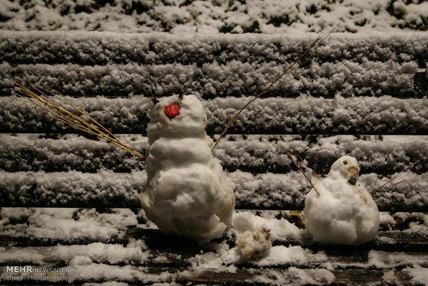Tahran'a nihayet kar yağdı
