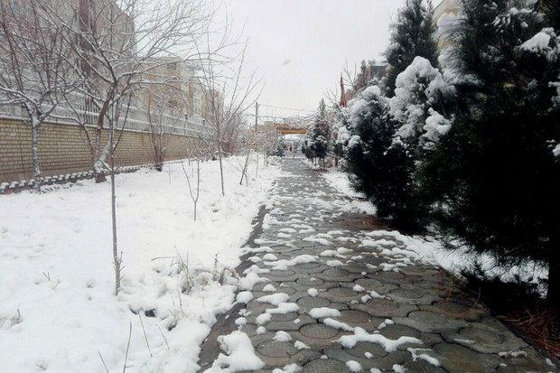 Snowfall and rain in Qom