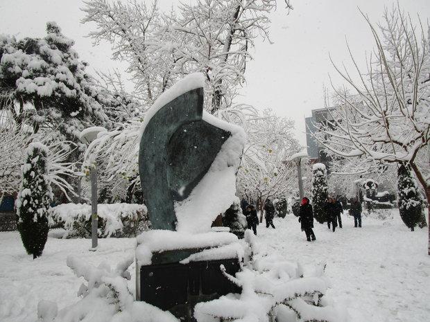 VIDEO: A snowy day in Tehran
