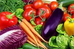 تولید بذرهای هیبریدی صیفی جات/ افزایش محصولات کشاورزی