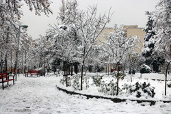روز برفی پایتخت