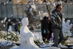 جشنواره مجسمه های برفی