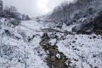 ارتفاعات البرز سفیدپوش میشود/ احتمال آبگرفتگی و وقوع سیل