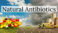 NATURAL ANTIBIOTIC