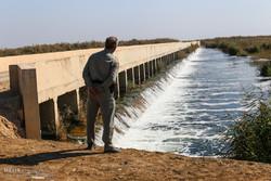 آموزش محیطبانان تالابی برای کمک به اجرای برنامه مدیریت تالابها