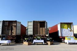 ۵ کامیون تخمه آفتابگردان قاچاق توقیف شد
