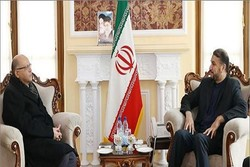 Amir-Abdollahian stresses Iran, Egypt parl. coop.