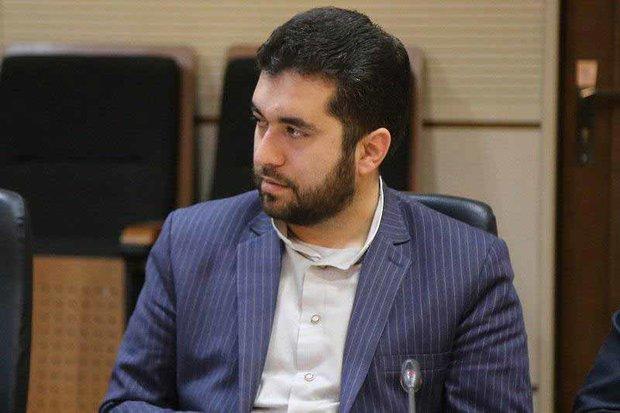 شورای عالی استانها برای همکاری با دولت و مجلس آمادگی دارد