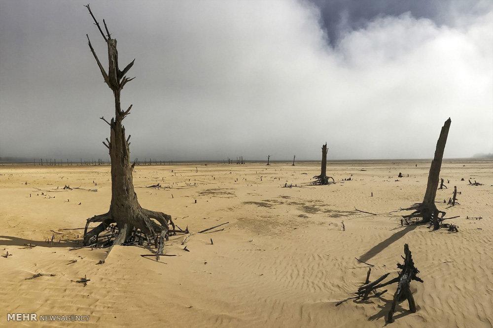 جیره بندی آب در آفریقای جنوبی